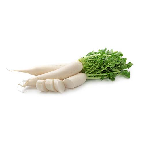 10907430 - daikon radishes isolated on white background