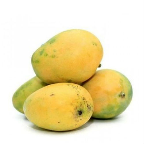 Mango - Banginapalli