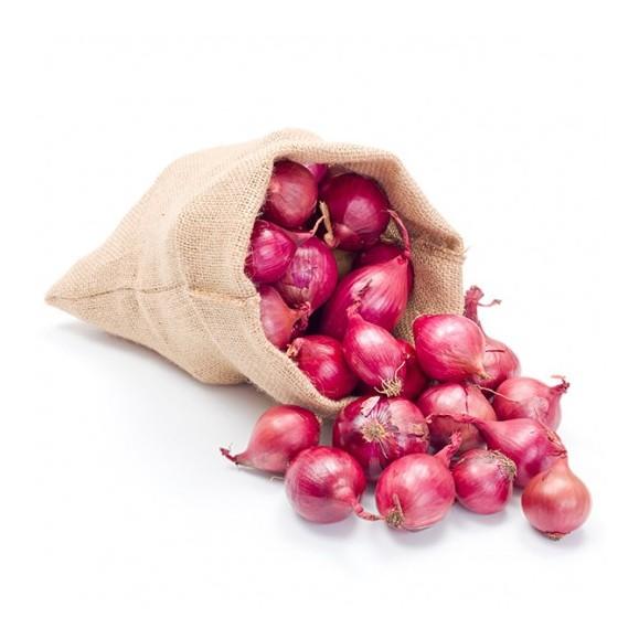 onion-bag